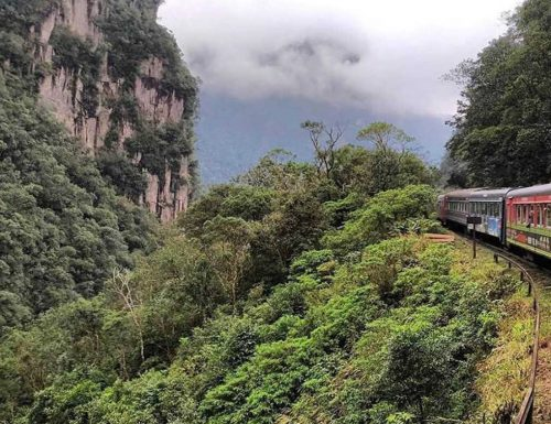 Serra Verde Express: il treno che attraversa la foresta atlantica del Brasile